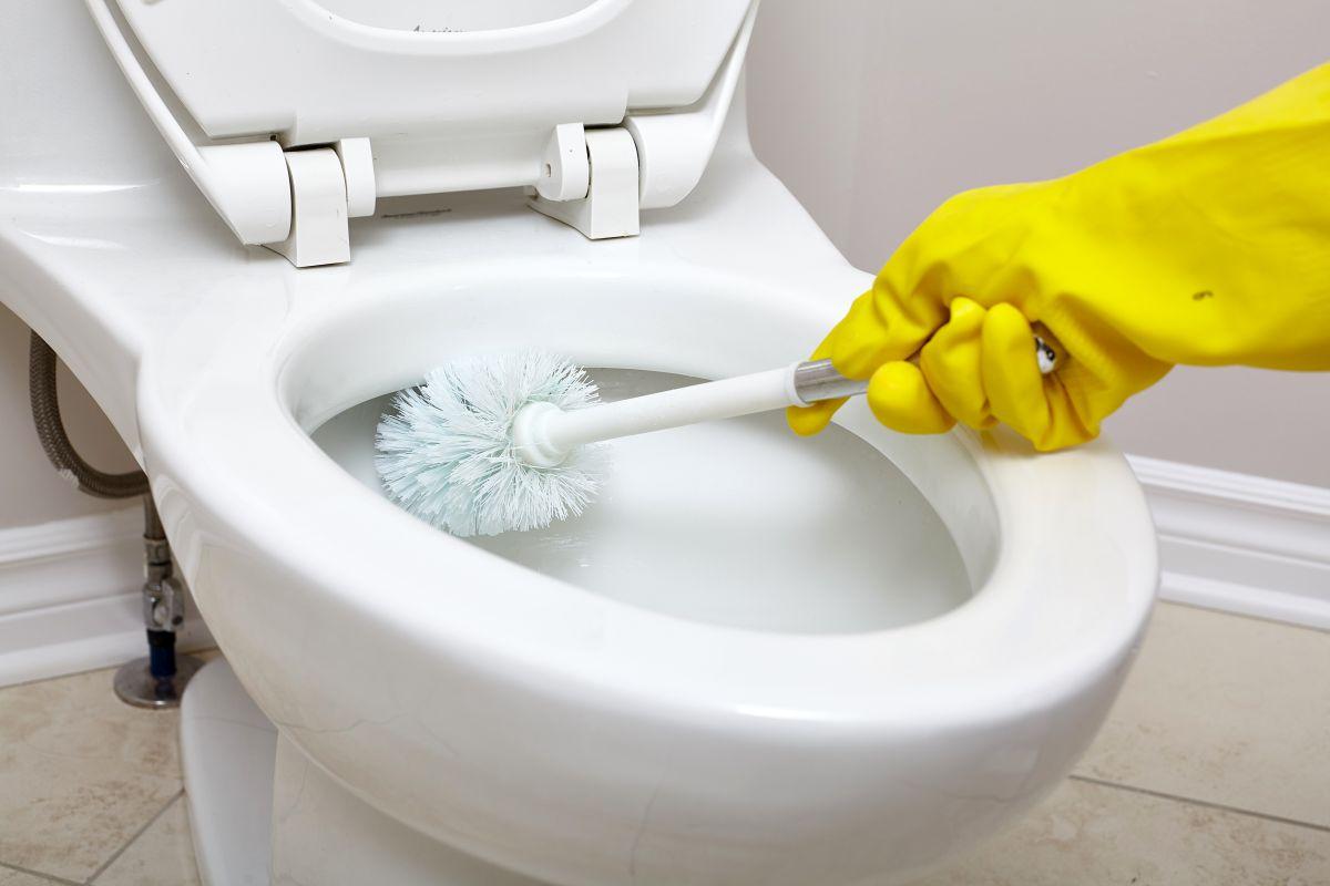 Jak dbać o czystość i higienę toalety